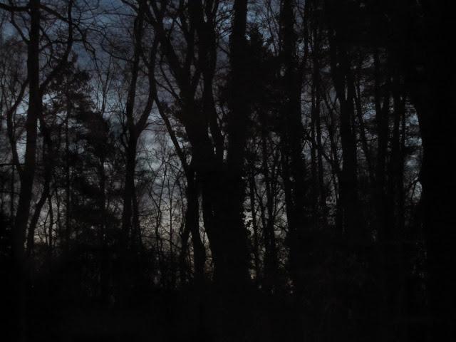 Daybreak in Kleinmachnow